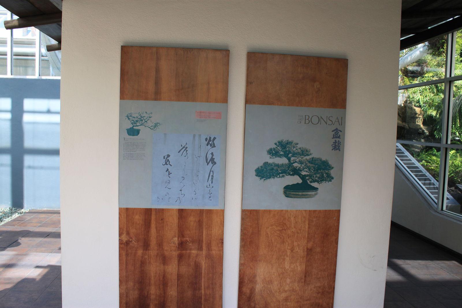 Panel zobrazujúci históriu bonsajového umenia.