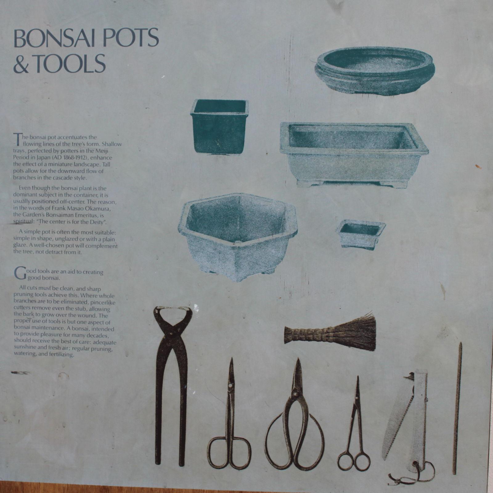 Informácie o pestovaní bonsajov